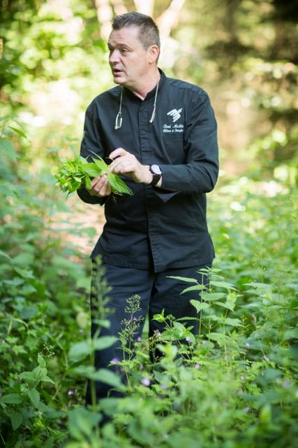 Cuisiner aux herbes sauvages - cueillette avec le chef Rene Mathieu
